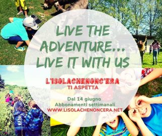 Summer adventure...live it with us!